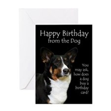 Funny Corgi Birthday Card