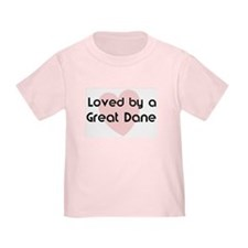 Loved by a Great Dane T