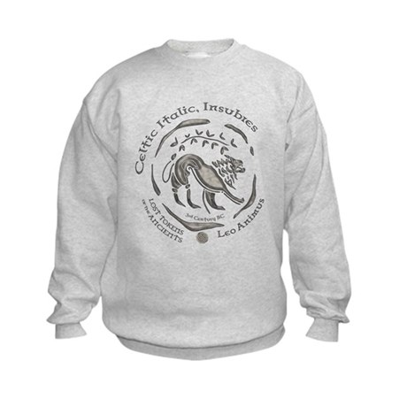 Celtic Lion Coin Kids Sweatshirt