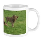 Small Mug with funny lions in Botswana