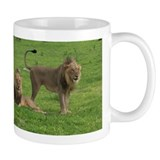 Small Mug with hungry lions starting to hunt