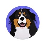 Bernese Mountain Dog 3.5