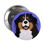 Bernese Mountain Dog 2.25