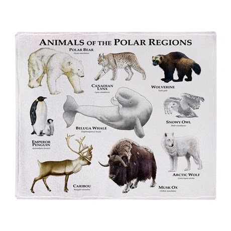 Animals Of The Polar Regions Throw Blanket By Wildlifearts2