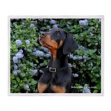 Doberman Puppy Throw Blanket