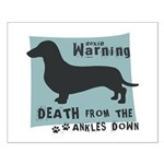 Doxie Warning Small Poster