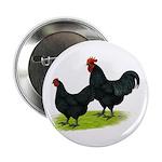 """Australorp Chickens 2.25"""" Button"""