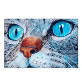 Blue-eyed Cat Postcards (Package of 8)