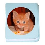 Cat Shelter Felix baby blanket
