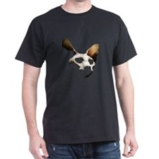 Funny Hairless cat T-Shirt