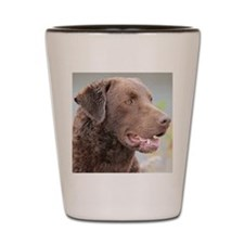 Cheasapeake Bay Retriever Shot Glass