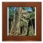 Te Phrom Tree Overgrowth 8 Framed Tile