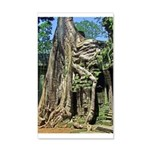 Te Phrom Tree Overgrowth 8 22x14 Wall Peel