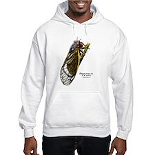 Cecropia Moth Caterpillar Hoodie