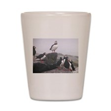 Puffin Conference Shot Glass