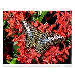 Butterfly on Red Flowers King Duvet