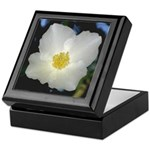 The Rapture of Spring Keepsake Box