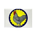 Maline Rooster Rectangle Magnet