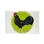 Ancona Rooster Rectangle Magnet (100 pack)