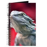 Dragon Head Journal