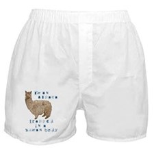 I'm an Alpaca Boxer Shorts