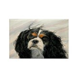 King Charles Cavalier Spaniel Rectangle Magnet (10