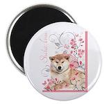 Cherry Blossom Shiba Inu Magnet