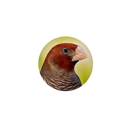 Red Headed Finch Mini Button