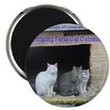 Cool Feral cats Magnet