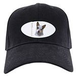 Australian Cattle Dog Black Cap