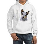 Australian Cattle Dog Hooded Sweatshirt