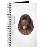 Brown Newfoundland Journal