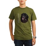 Newfoundland Organic Men's T-Shirt (dark)