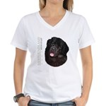 Newfoundland Women's V-Neck T-Shirt