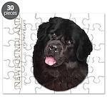 Newfoundland Puzzle