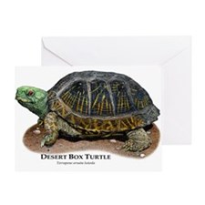 Desert Box Turtle Greeting Card