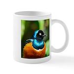 Superb Starling Mug