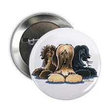 "3 Afghan Hounds 2.25"" Button (10 pack)"