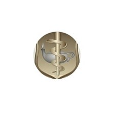 USAF Nurse Mini Button (100 pack)
