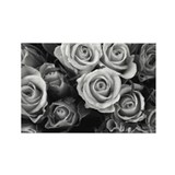 Rose Photography Rectangle Magnet