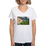 Djibouti Flag Women's V-Neck T-Shirt