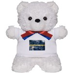 Nauru Flag Teddy Bear