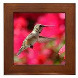 Hummingbird 3229 - Framed Tile