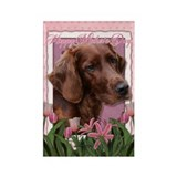Mothers Day Pink Tulips Irish Setter Rectangle Mag