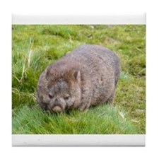 Wombat Tile Coaster