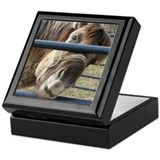 Neb nose Keepsake Box