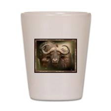 Cape Buffalo Shot Glass