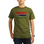 Gambia Flag Organic Men's T-Shirt (dark)