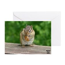 Chipmunk Greeting Cards (Pk of 10)