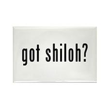 GOT SHILOH Rectangle Magnet (10 pack)